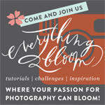 The Bloom Forum